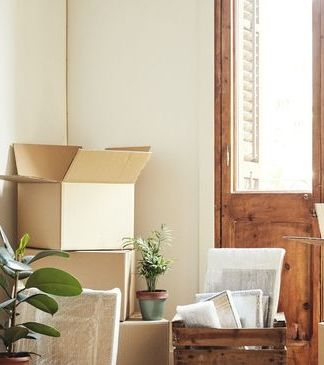 cardboard boxes and potted plants in empty room moving objects are on hardwood floor of new apartment