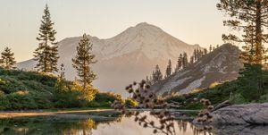 Mount Shasta and Lake