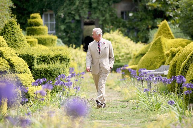tetbury, england   july 19  strictly for editorial use only images require approval mandatory caption images are part of a set to mark his royal highnesss 70th birthday it is the responsibility of the end user to adhere to these instructions prince charles, prince of wales walks through the gardens of highgrove house on july 19, 2018 in tetbury, united kingdom  photo by chris jacksongetty imagesfor clarence house