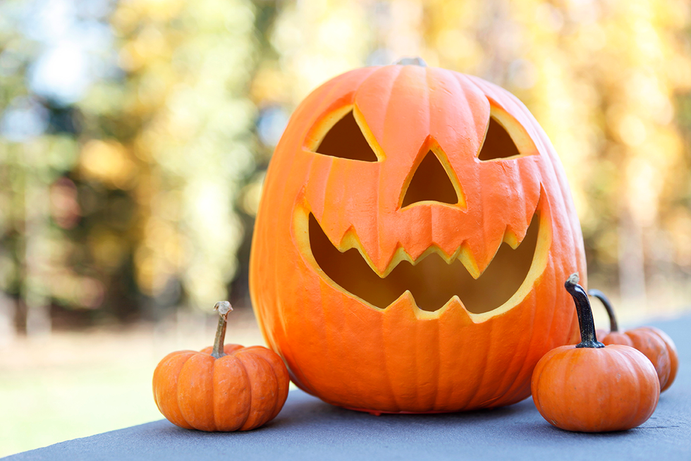 How to Carve a Pumpkin That Will Look Incredible the Entire Halloween Season