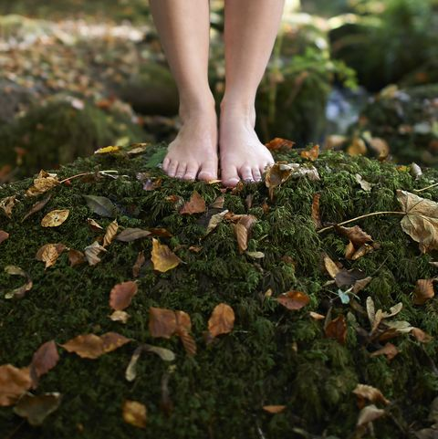 Feet on moss covered rock in autumn woodland.