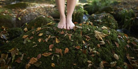 feet on moss covered rock in autumn woodland