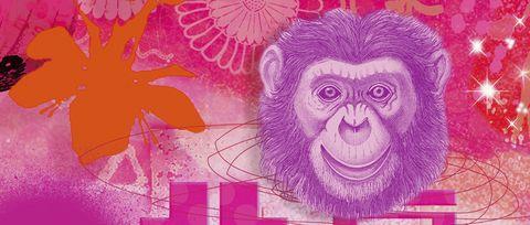 Banknote, Pink, Paper, Primate, Magenta, Snout, Illustration, Art, Paper product, Organism,