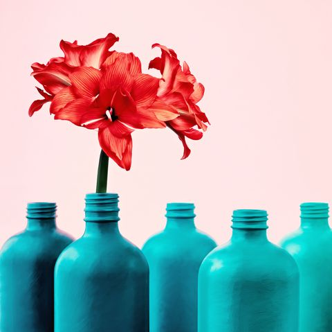 Blue, Turquoise, Bottle, Aqua, Plastic bottle, Water, Vase, Water bottle, Flower, Still life photography,