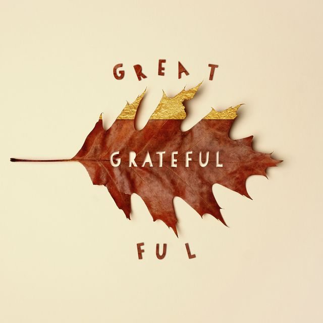 brown fall oak leaf dipped in gold leaf with cutout text reading grateful arranged on an off white background