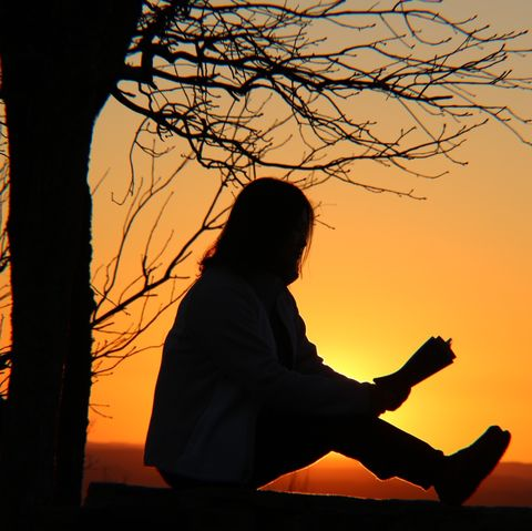Silhouette Woman Reading Book While Sitting By Bare Tree Against Orange Sky