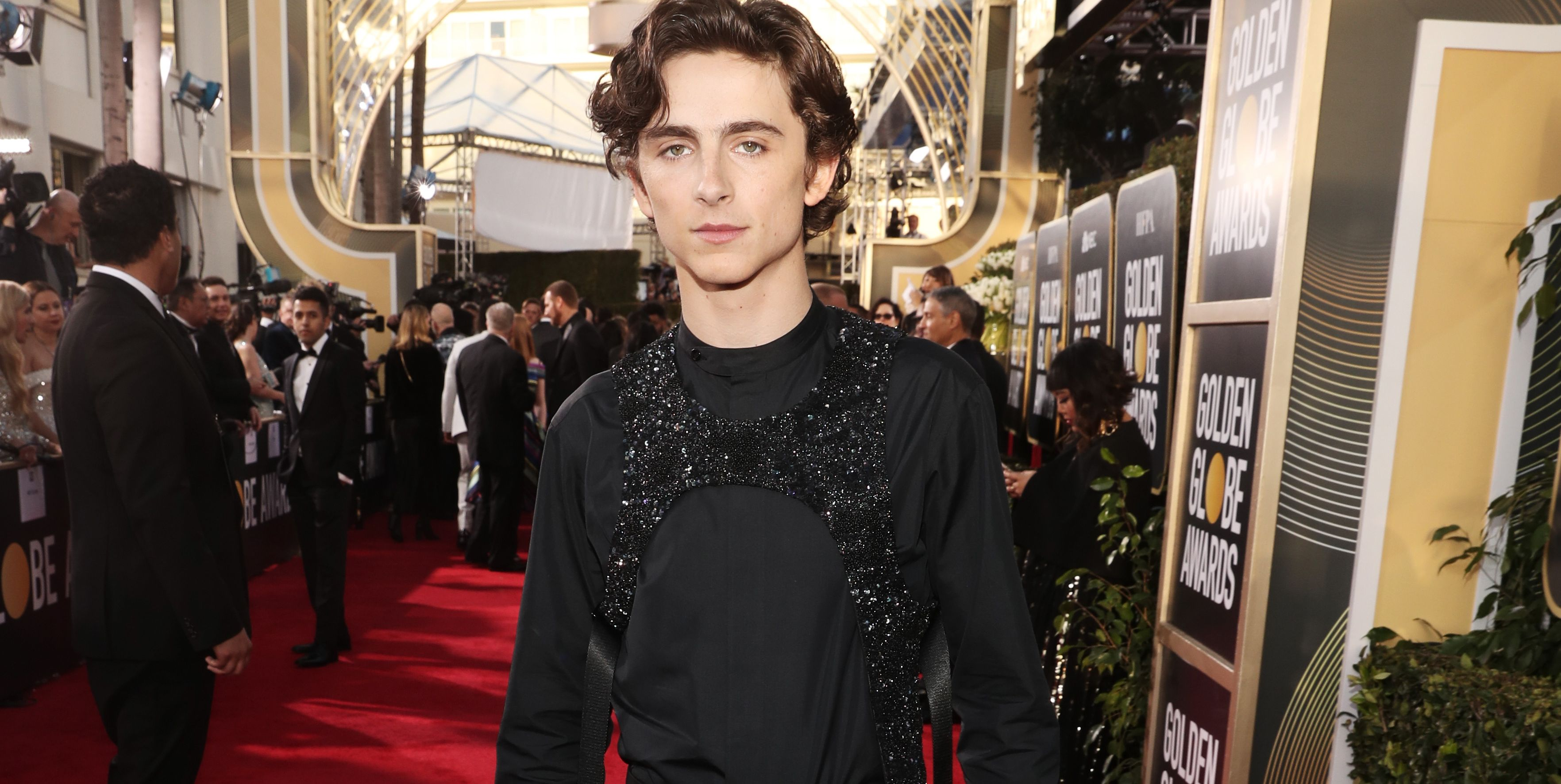 We Need More Harnesses on the Red Carpet. There, I Said It.