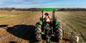 Partial Government Shutdown - soybean subsidies