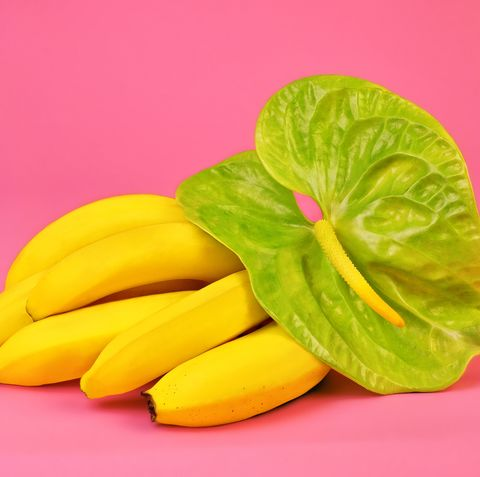 Yellow, Plant, Leaf, Food, Vegetable, Petal, Leaf vegetable, Vegan nutrition, Flower, Produce,