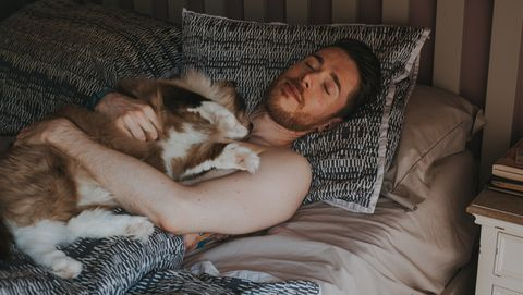 Young man in bed with a Ragdoll cat lying on his chest