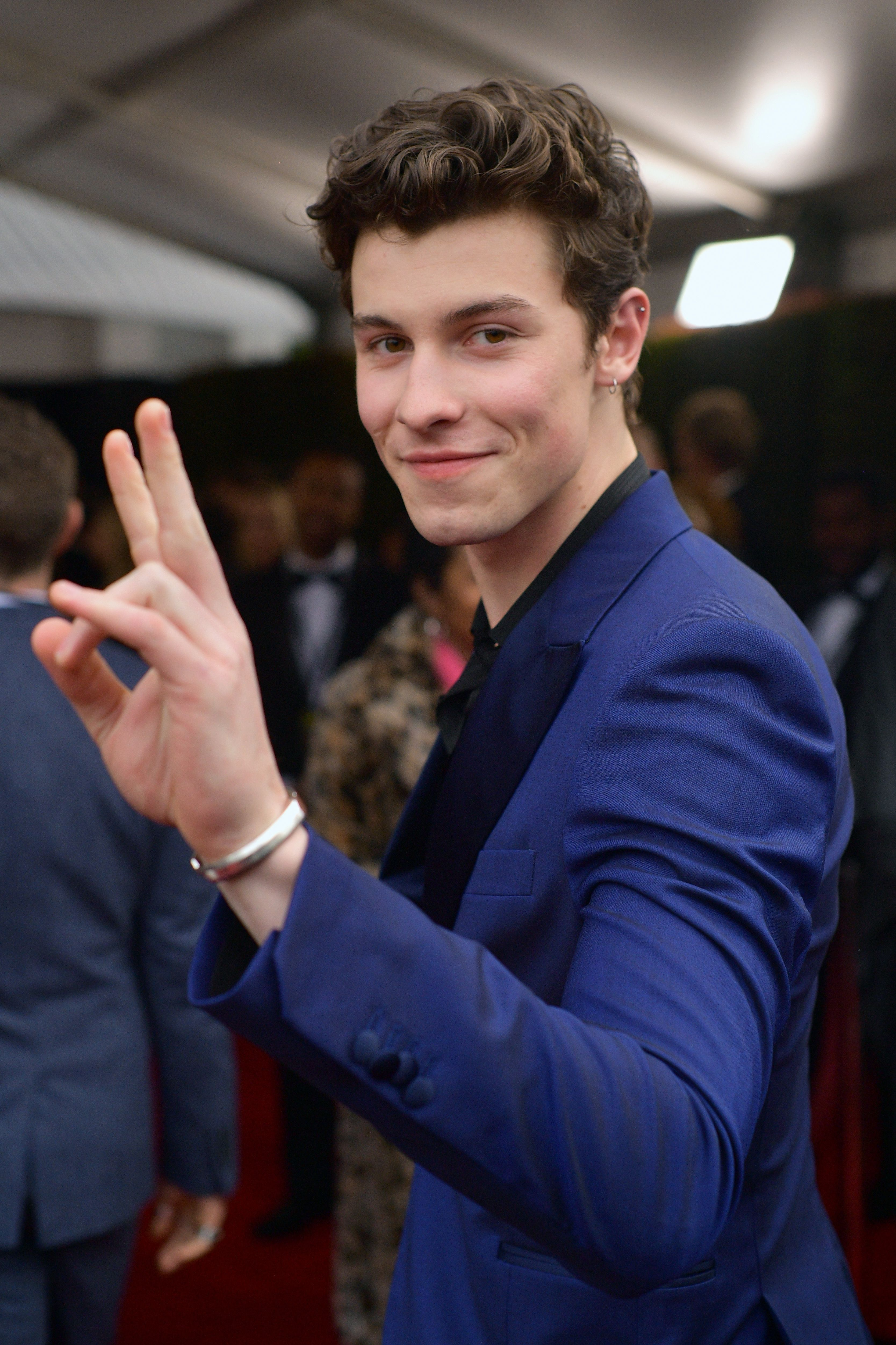 Shawn Mendes Fan Asks for Advice on Telling Parents She's Bisexual