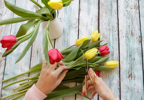 Flower, Tulip, Plant, Yellow, Flowering plant, Spring, Floristry, Lily family, Bouquet, Floral design,