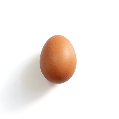 An egg on the white background