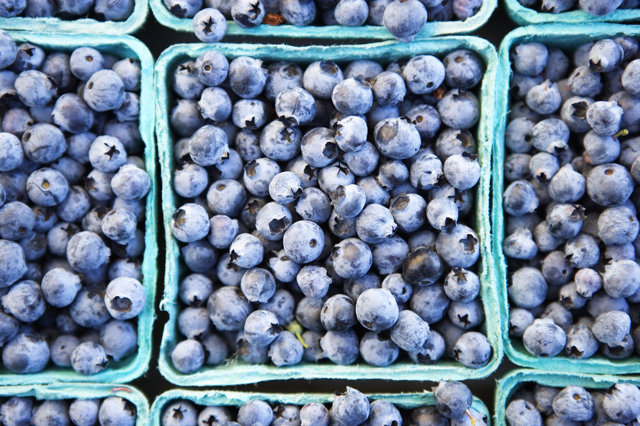 7 Unexpected Benefits of Blueberries You Probably Didn't Know About
