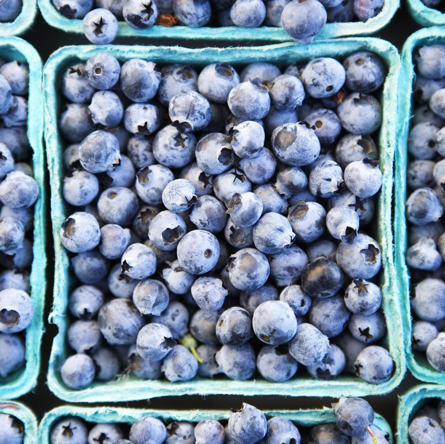 6 Unexpected Benefits of Blueberries You Probably Didn't Know About