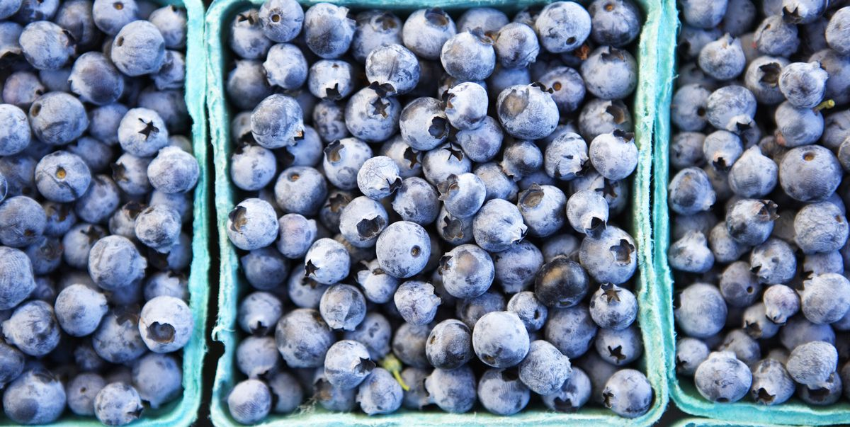 Are Blueberries Good For You Blueberry Benefits