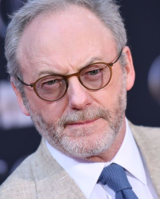 Liam Cunningham (and beard) The book's Ser Davos wears a beard peppered with gray.