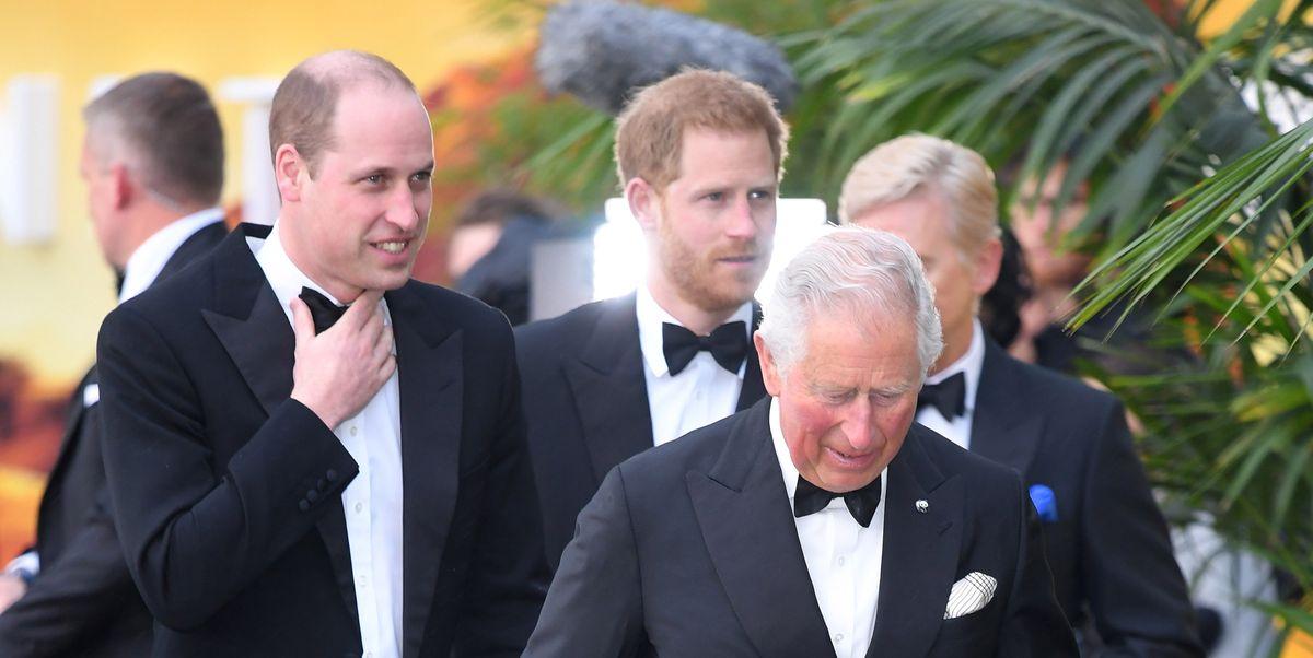 """""""Tra me e William c'è un problema"""", il principe Harry parla del rapporto difficile col fratello (che sospettavamo)"""