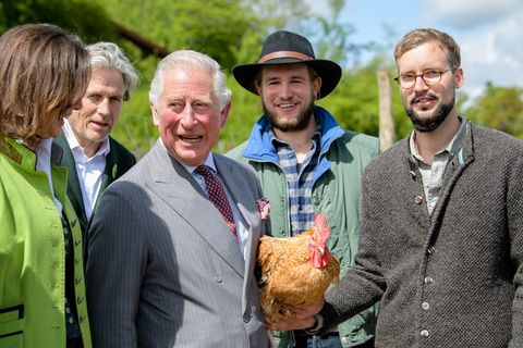 prince charles rooster