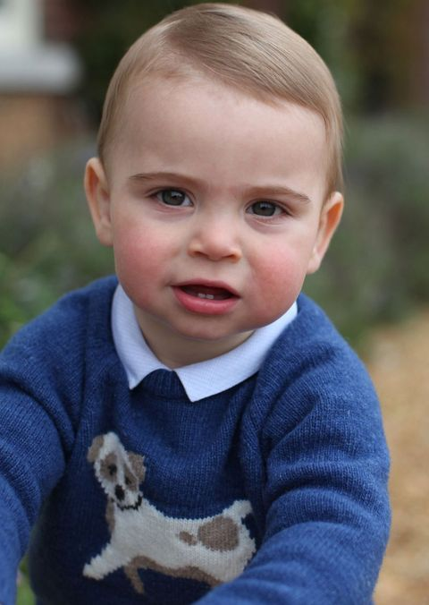 prince louis first birthday photo puppy sweater