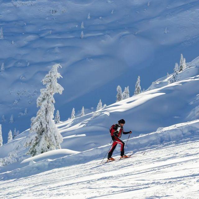Skier, Winter sport, Snow, Skiing, Winter, Piste, Ski, Outdoor recreation, Recreation, Ski mountaineering,