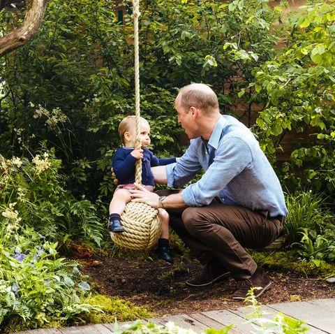 People, Tree, Botany, Sitting, Spring, Plant, Grass, Garden, Woodland, Leisure,