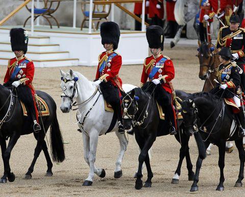 Horse, Bridle, Halter, Rein, Animal sports, Uniform, Recreation, Stallion, Horse tack, Sports,