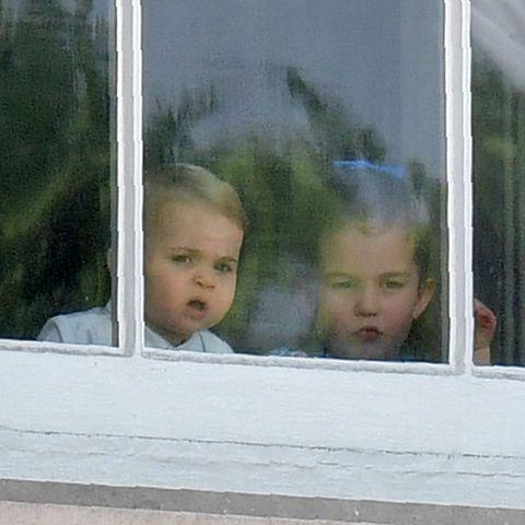 Window, Child, Glass, Tree, Vacation,