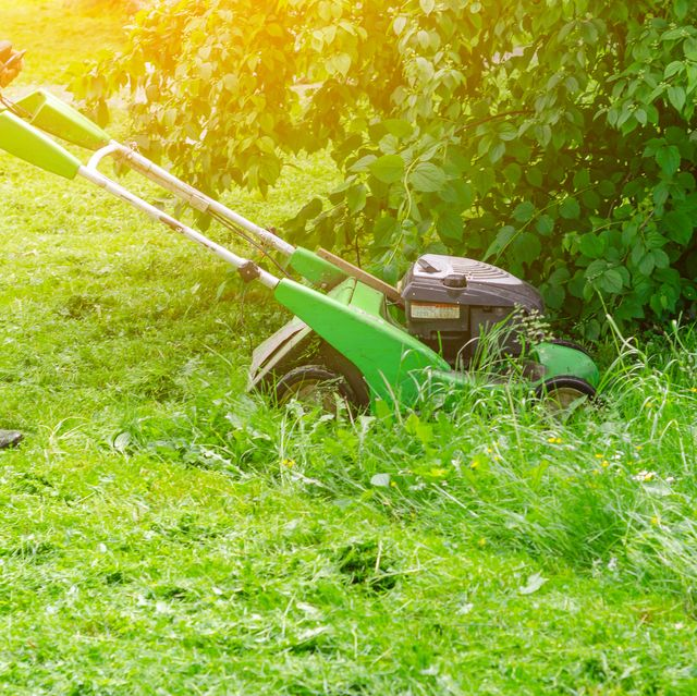 here's why we should put our lawnmowers down this month
