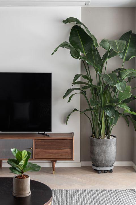 Interior shot of beautiful stylish livingroom