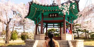 Asian woman sightseeing Korean pavilion in the park with the cherry blossoms are blooming in Seoul, South Korea.