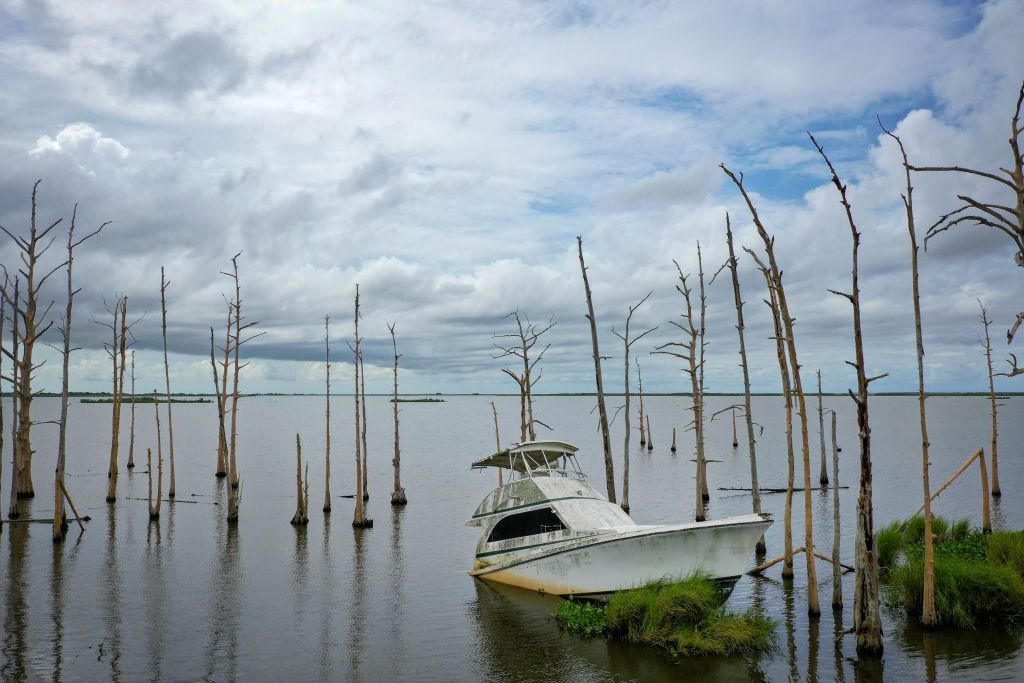 Louisiana's Marshlands Have Reached the Point of No Return
