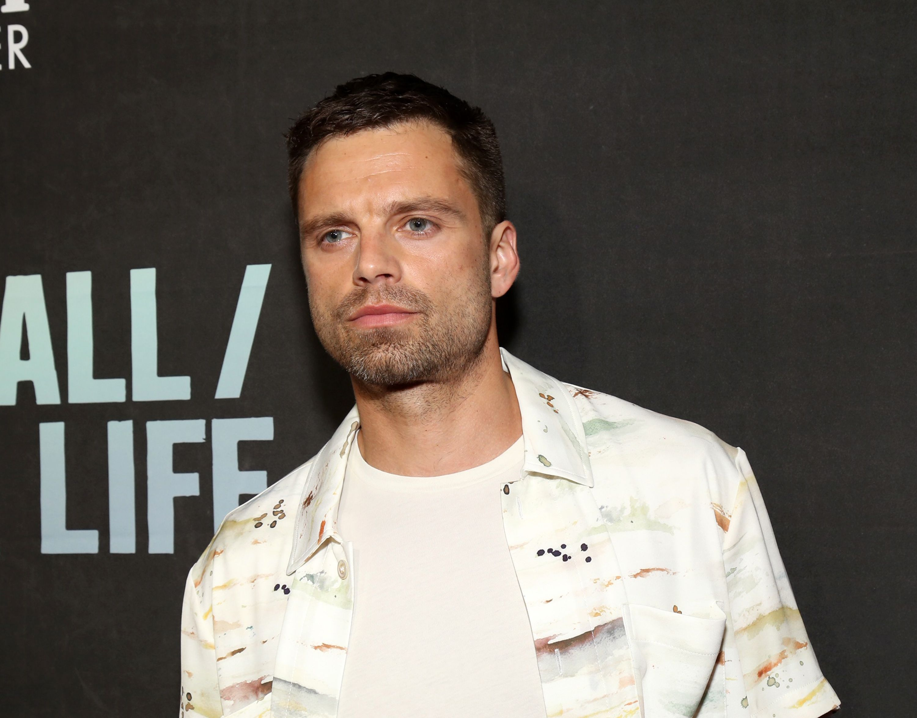 Sebastian Stan Isn't Scared Of An Oversized Shirt. You Shouldn't Be Either