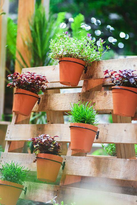 Plant A Vertical Garden, How To Design Outdoor Flower Pots