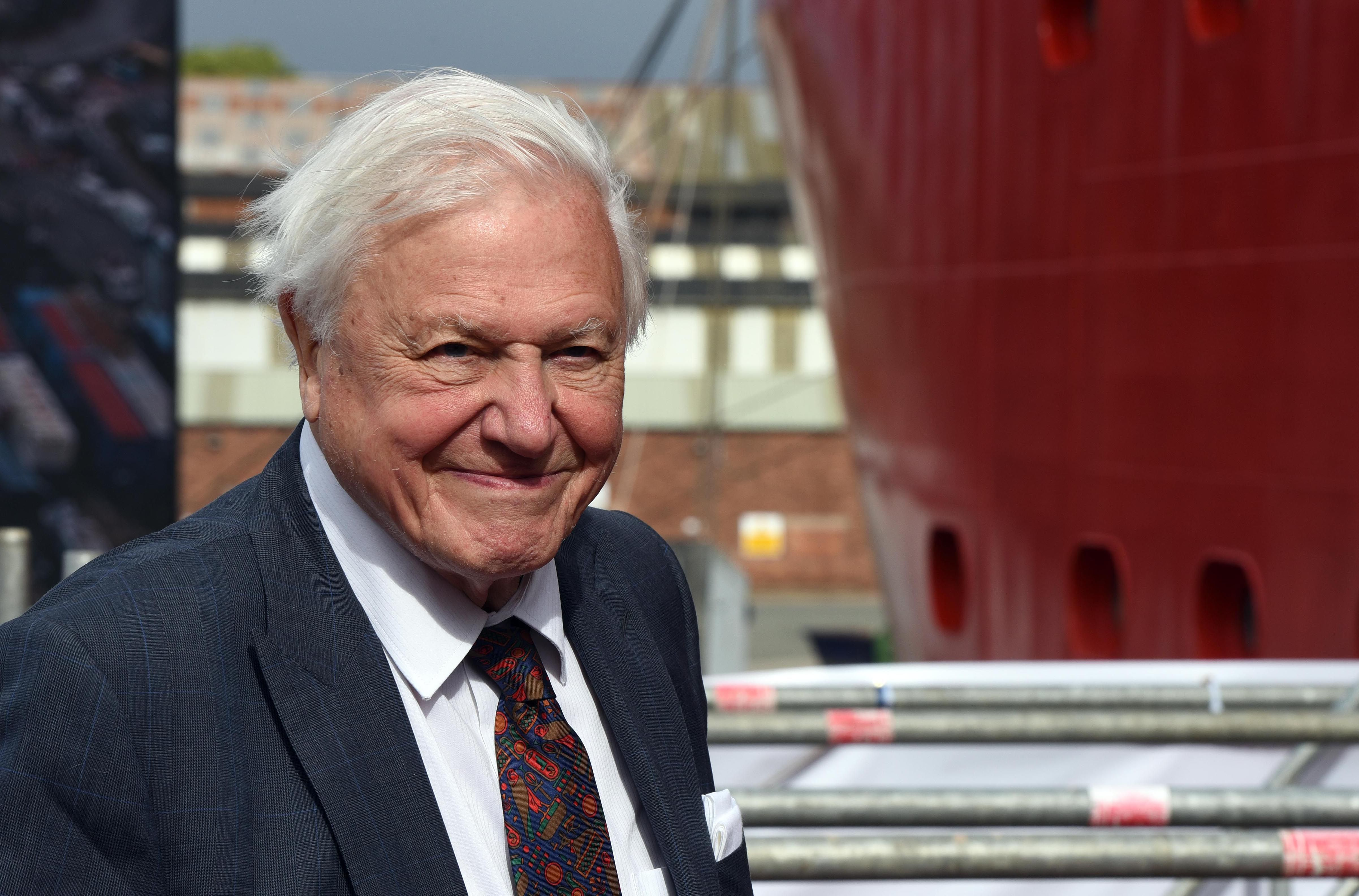 Sir David Attenborough's groundbreaking new documentary gets air date - and it's so soon