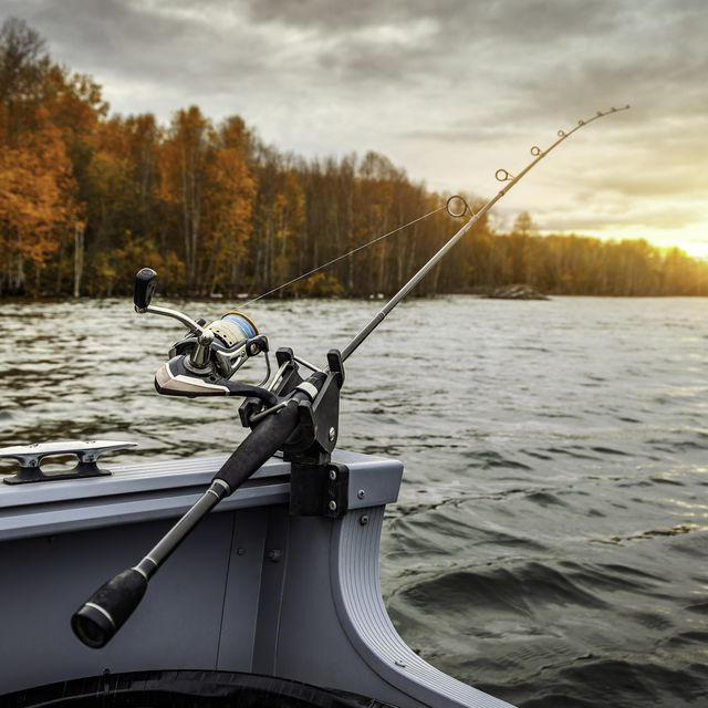 10 Best Fishing Rods and Reels 2021