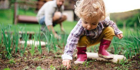 tuinieren met kinderen doe je zo
