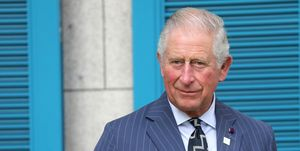 prince charles the prince of wales suit