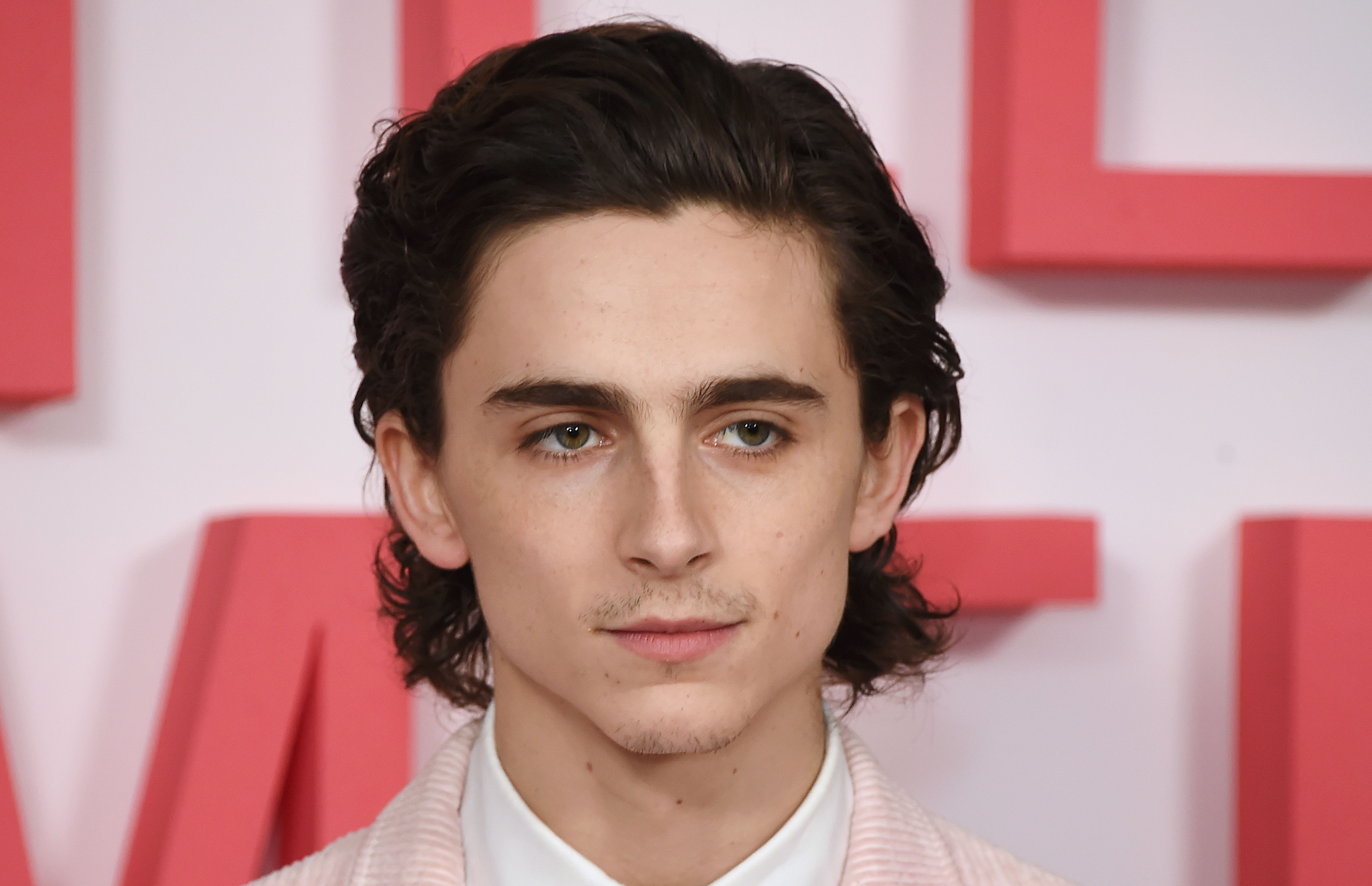 This TikToker's Transformation Into Timothée Chalamet Is The Reason I Have Trust Issues