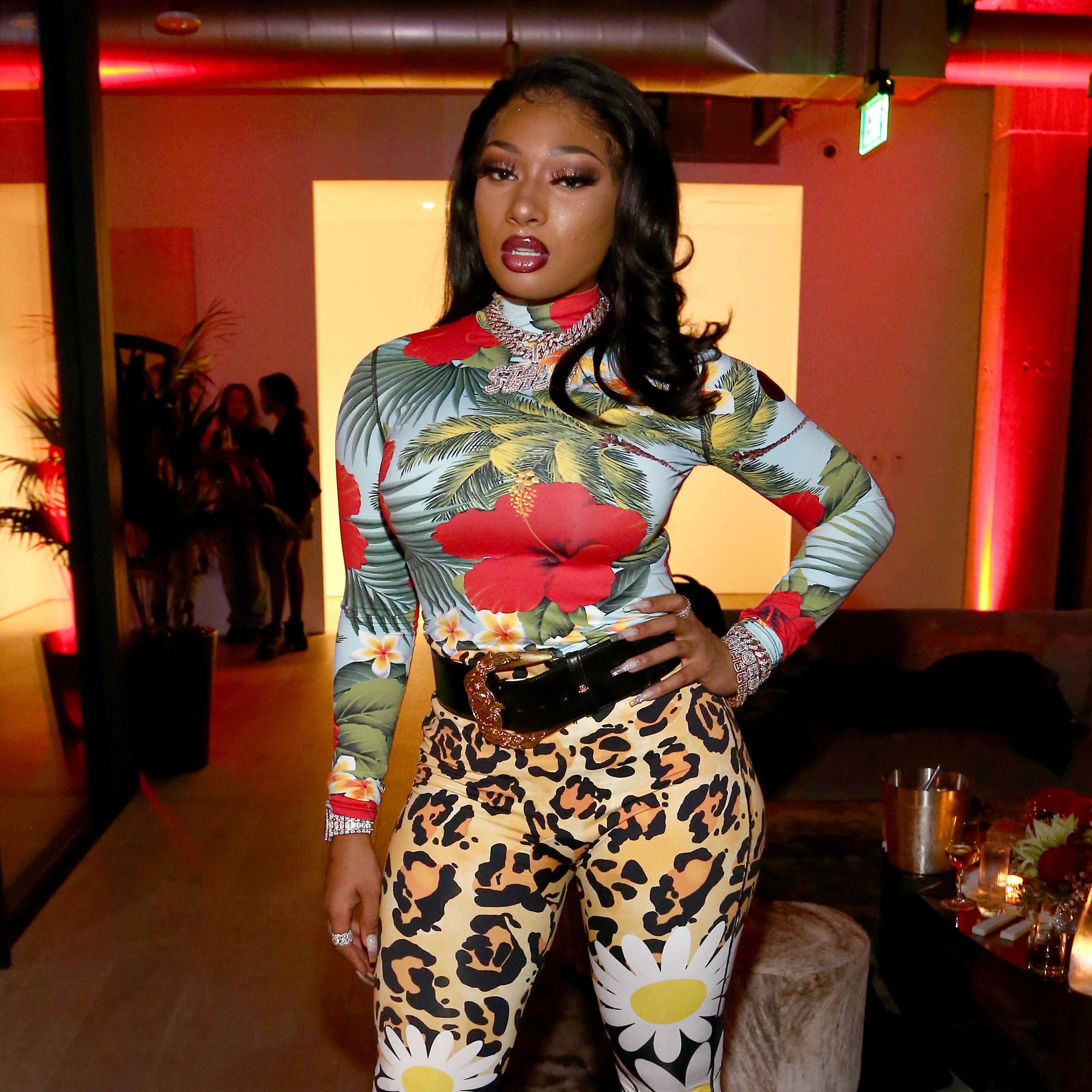 Megan Thee Stallion Releases New Song