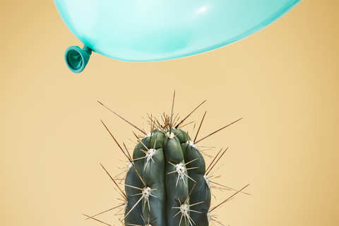 a balloon flying dangerously close to a cactus
