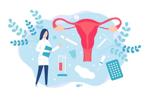 gynecology and women health consultation with a gynecologist or reproductologist isolated vector illustration