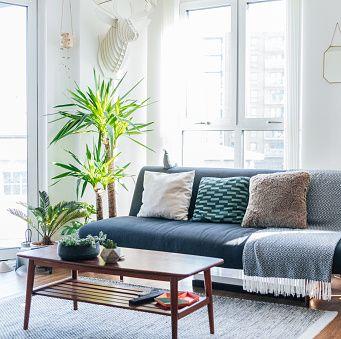 ソファやローテーブル、観葉植物が置かれた部屋