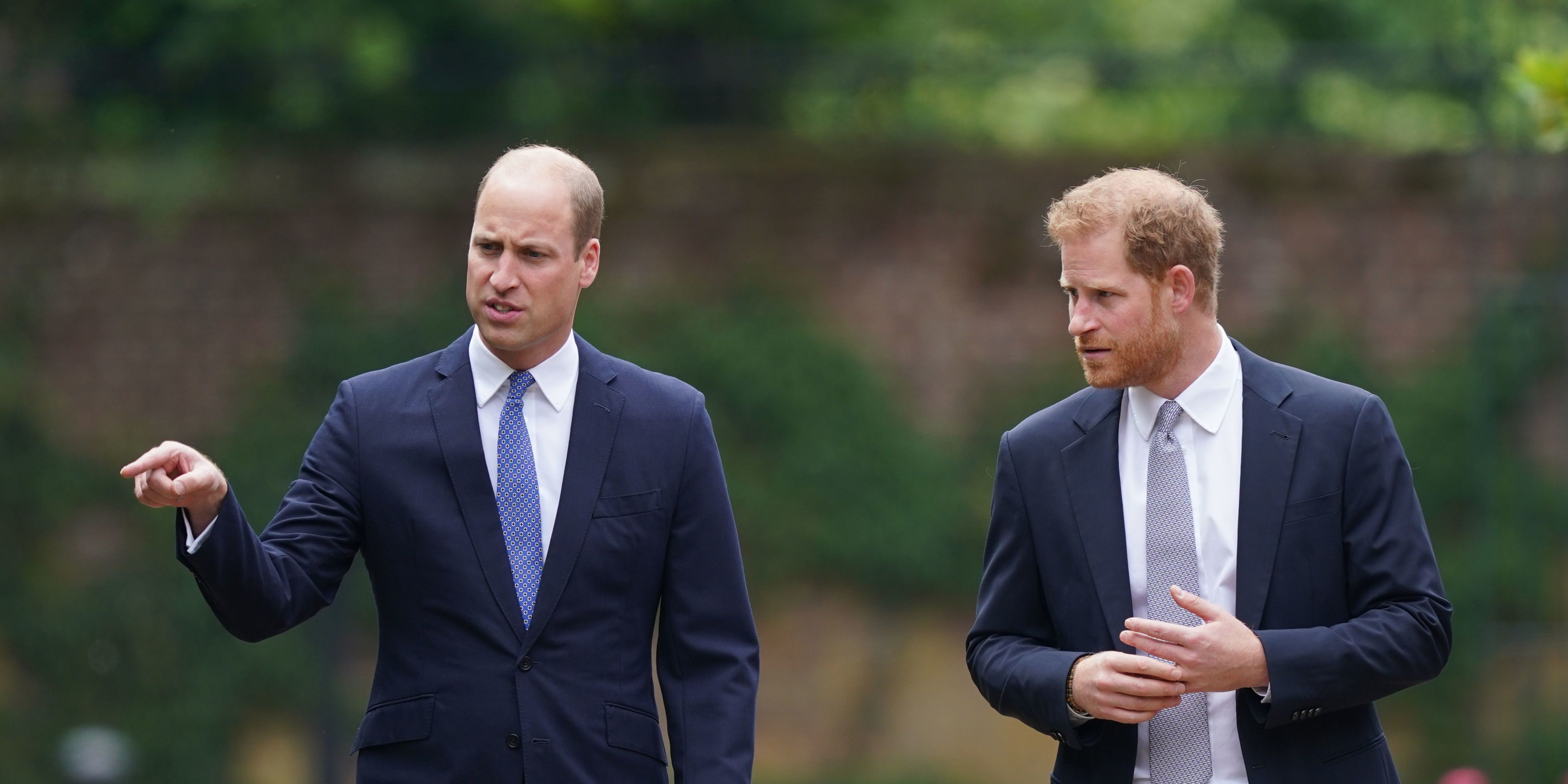 Prince William Mentions Prince Harry in Speech at Diana Event