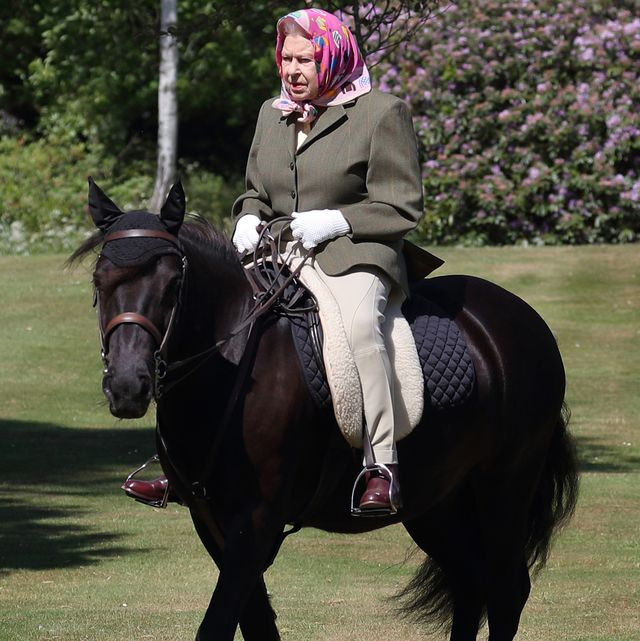 windsor, england   may issue date sunday may 31, queen elizabeth ii rides balmoral fern, a 14 year old fell pony, in windsor home park over the weekend of may 30 and may 31, 2020 in windsor, england the queen has been in residence at windsor castle during the coronavirus pandemic photo by steve parsons   wpa poolgetty images