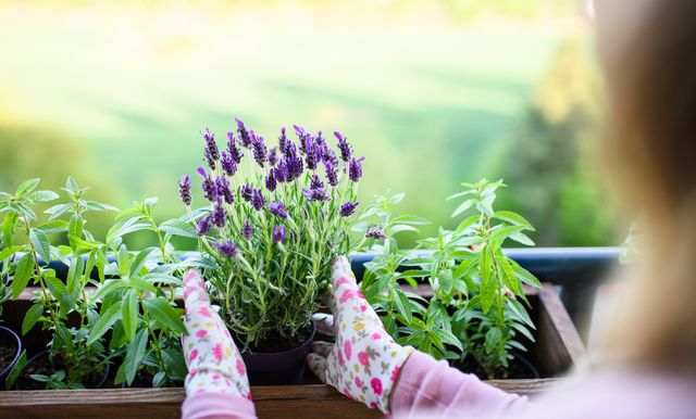most popular songs to listen to while gardening