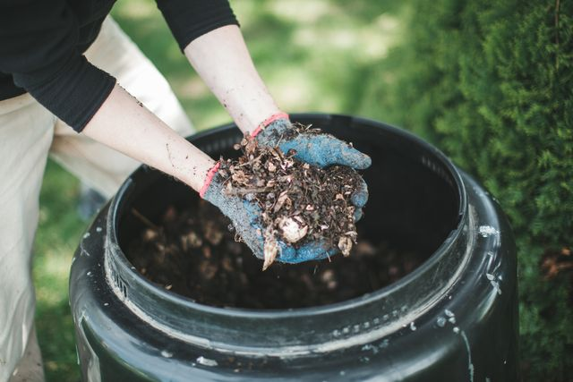 man hold out his hands with gardening gloves holding out hand fulls of compost from his compost bin