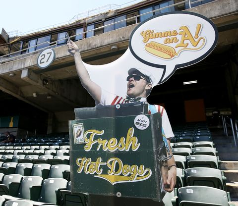 hal the hot dog guy cardboard cut out