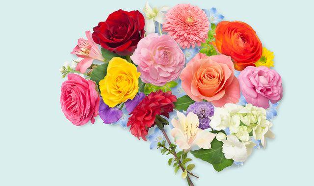 dahlia, rose, ranunculus, alstroemeria, freesia, sweet pea, tulip, gerbera, linum trigynum, tuberosa, mum, hydrangea, daisy, bupleurum rotundifolium, scabiosa, delphinium,  ivy,