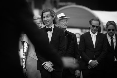 french dispatch cannes